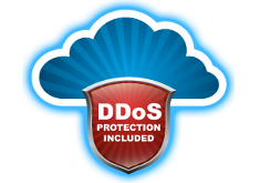 Coolhousing, Basic DDoS protection included